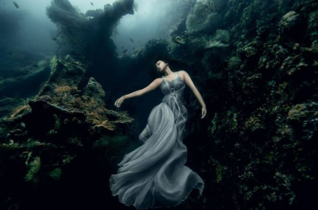 Best_underwater_pictures (6)