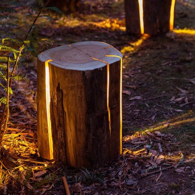 The lamp made from an old tree stump