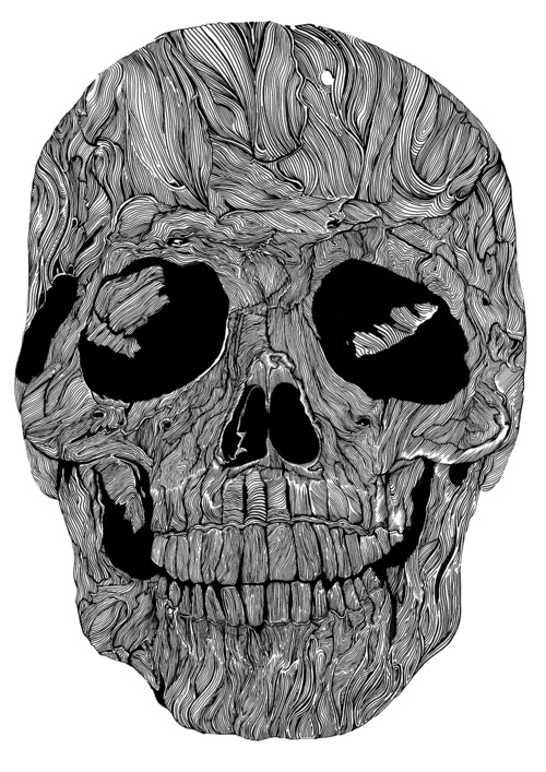 Skull_Illustrations_by_Sam_Sephton (3)