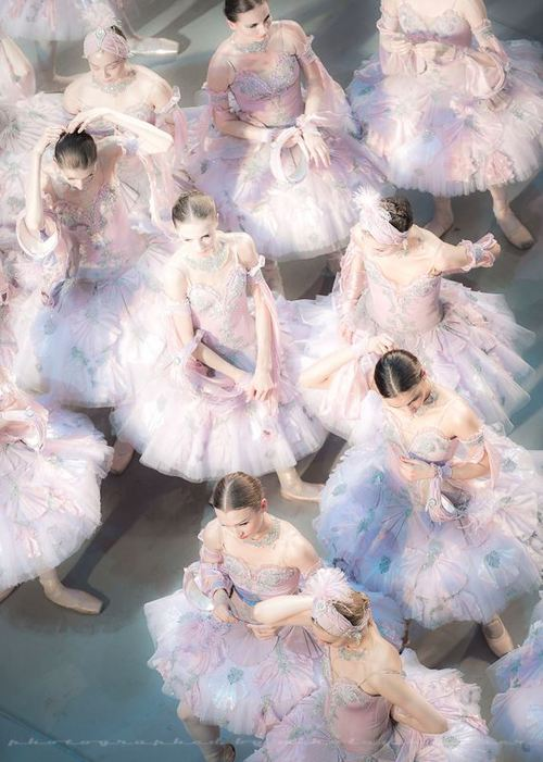 Paintings and Illustrations of Ballet Dancers (7)