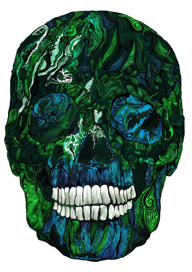 Extraordinary Human Skull Illustration