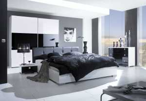 artistic-black-and-white-interior-design_2018_1