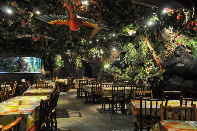 The_Rainforest_ Cafe_London