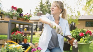 Tidy up your home and garden