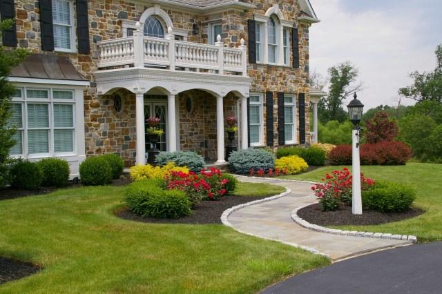 color scheme in your garden