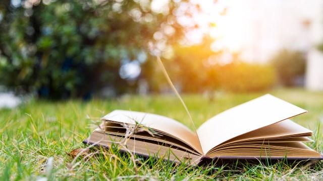the Bookbub blog