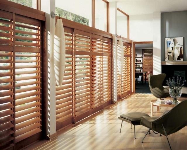 Lutron blinds_Window_Blinds