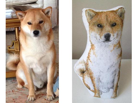 pet pillows,