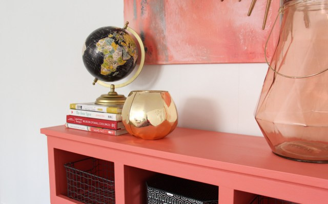 PANTONE 16-1546 Living Coral 2019 Pantone Color of the Year Decor