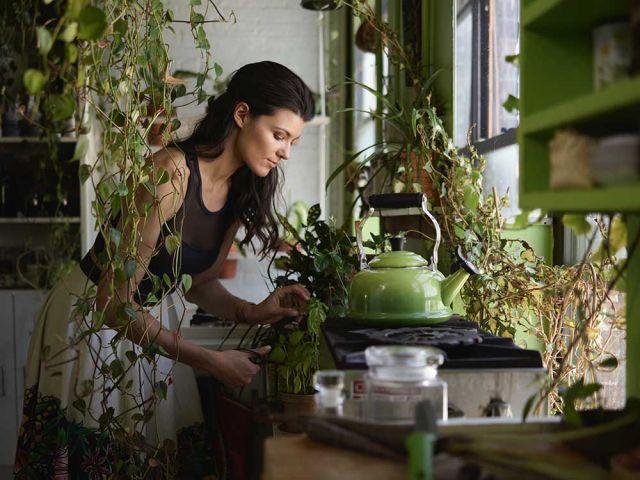 therapeutic benefits of gardening