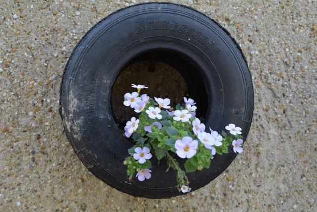 Tire gardening