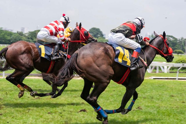 Horse Racing Courses To Visit In UK