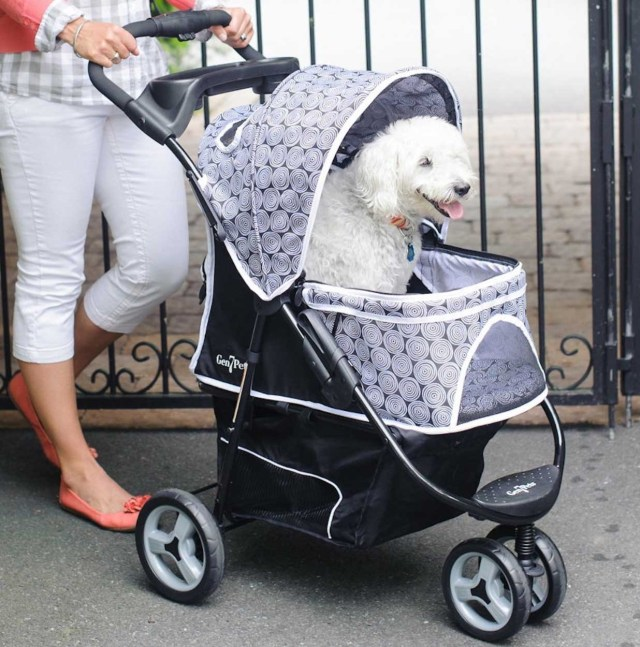 Reasons for dog owners getting pet strollers