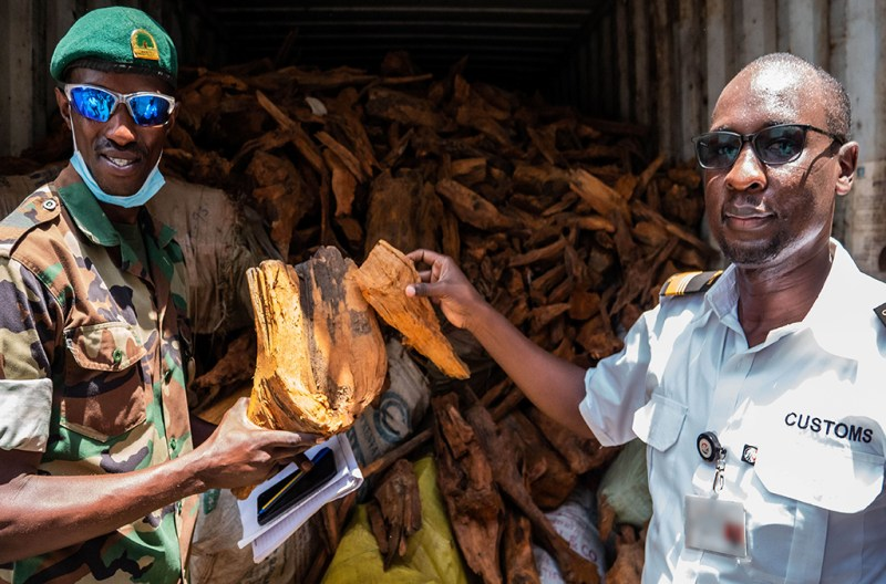 Since its creation in November 2010, ENS has seen the seizure of over one million truckloads of illegal timber
