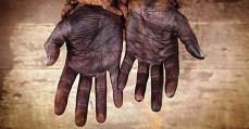Leonardo Sakamoto - Governo atende a pedido de ruralistas e dificulta libertação de escravos