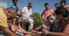 Era Temer já tem mais de 100 assassinatos por conflitos agrários