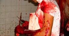Trabalho no Brasil mata e mutila | INTERSINDICAL