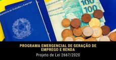 programa emergencial de geração de emprego e renda