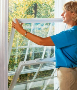 replacement windows west michigan