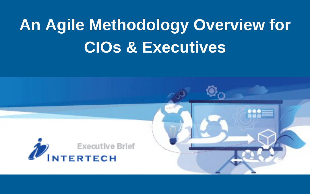 Executive Brief: An Agile Methodology Overview for CIOs & Executives