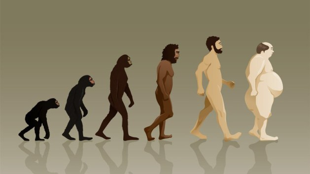 human_evolution_forweb