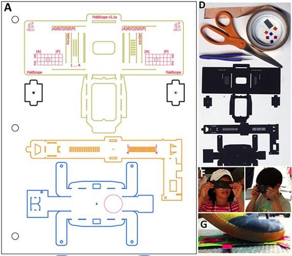 Crea tú mismo un microscopio de papel recortable por menos de un euro