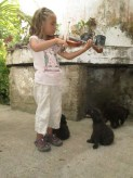 Lanie performs for the puppies