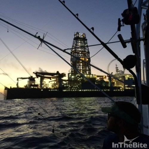 Drill ship hold fish day and night. photo Keith Richardson