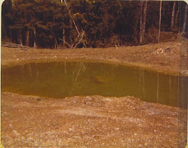 Newly Dug Pond