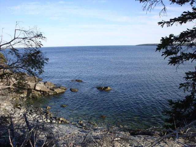 Scenic Overlook from Homestead 1