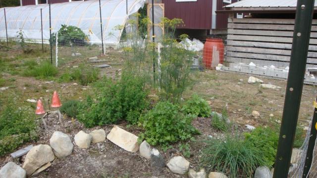 Nova Scotia Herb Garden