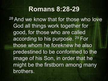 romans 8 28-29, praising god, worship god, in all things, god is good, god's goodness, god's purpose