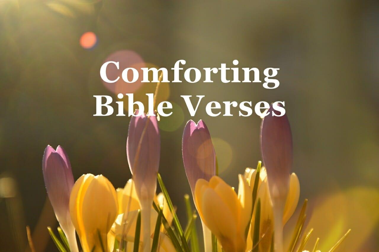 Comforting Bible Verses & Encouraging Scriptures
