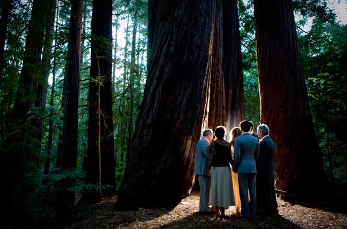 Real Weddings Rachel And Sky S California Forest Wedding