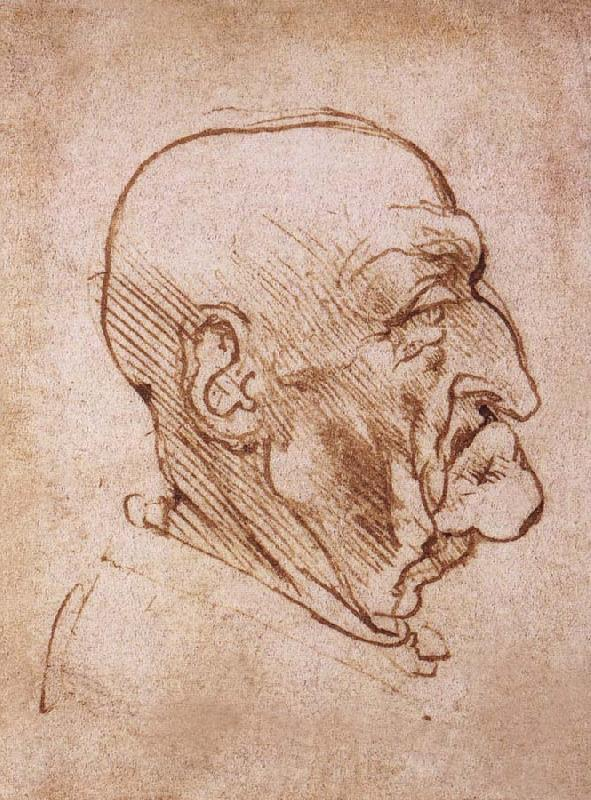 https://i2.wp.com/www.intofineart.com/upload1/file-admin/images/new12/LEONARDO%20da%20Vinci-782363.jpg