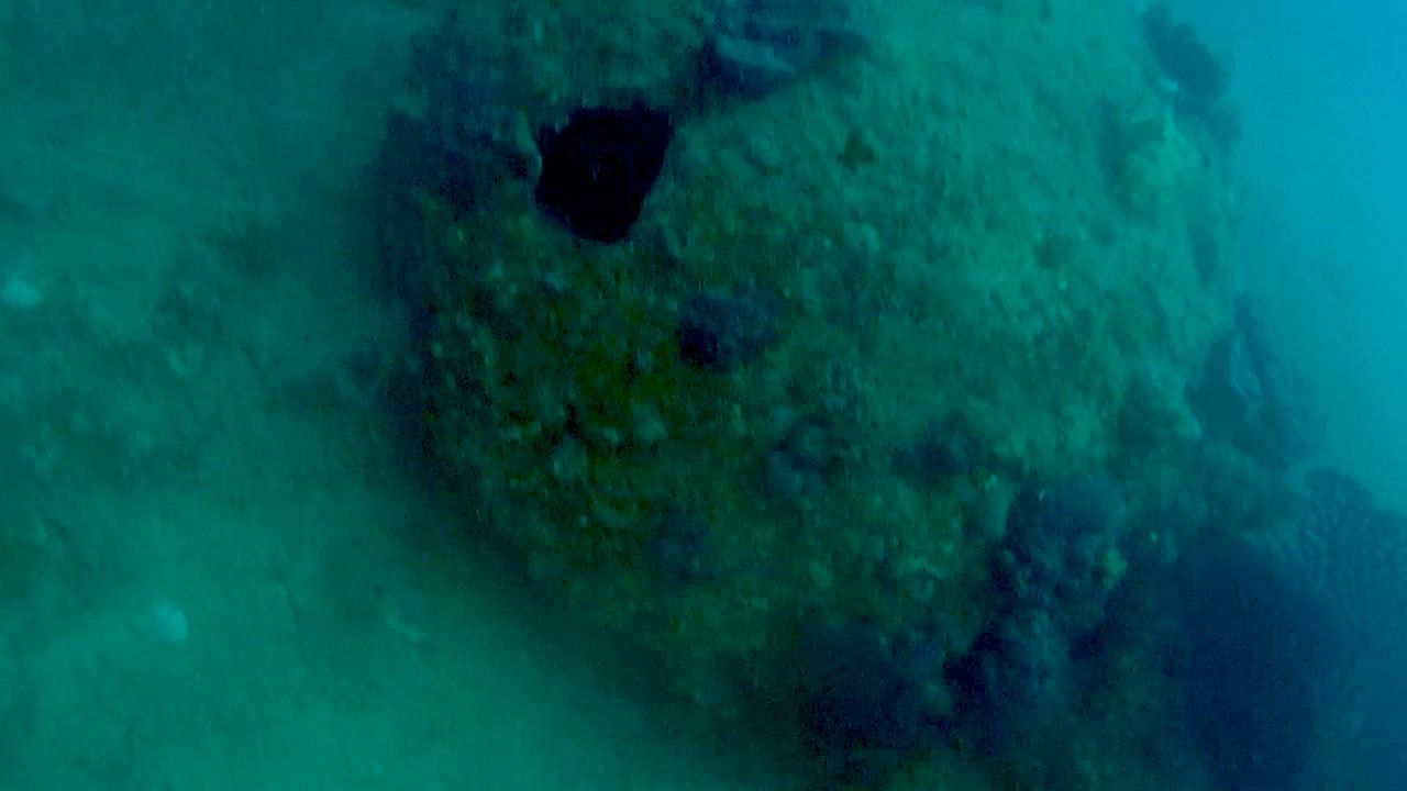 Mina navale della seconda Guerra Mondiale ricoperta da incrostazioni marine - Naval mine of the Second World War covered with marine encrustations - intotheblue.it