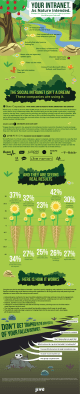 Jive Social Intranet Infographic
