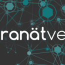 Conference review: Intranatverk 2013, Gothenburg