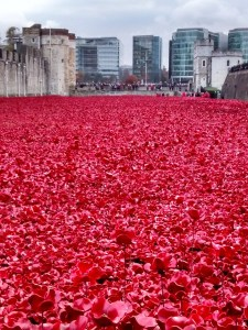 River of Poppies Tower of London 1914-1918 Centenary