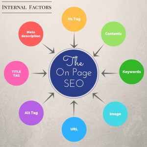 Internal factors of the on page SEO, like Title Tag, Alt Tag, URL, Image, Keywords, Contents, H1 Tag, Meta description.