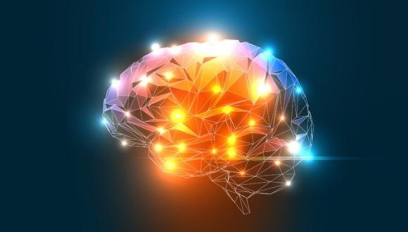 Cérebro do Introvertido: como ele determina seu comportamento?