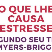 O que lhe causa estresse: segundo a tipologia de personalidade Myers-Briggs