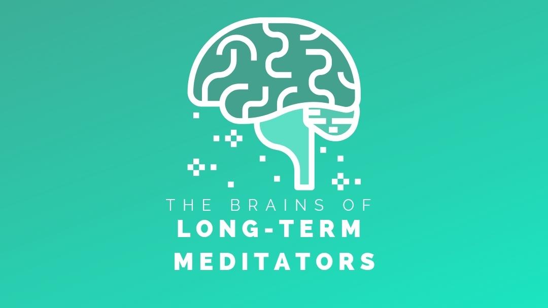 The brains of long-term meditators