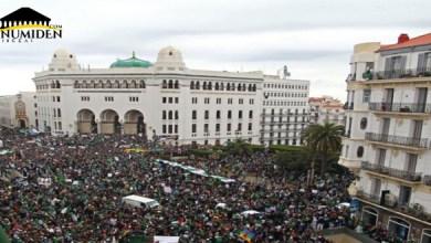 Photo de Algérie, les muscles et la raison