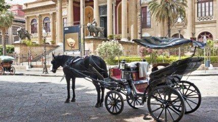"""Carrozze a Palermo/ Muore un cavallo. Confartigianato attacca il Comune: """"Viabilità folle"""""""