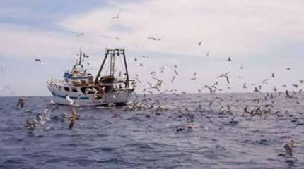 La pesca in Sicilia: soldi per tutti, tranne che per pescatori e armatori