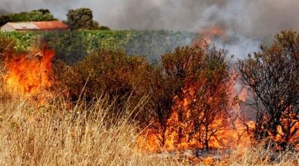 Gli incendi in Sicilia: tutto previsto, proprio per questo è stata bandita la prevenzione...