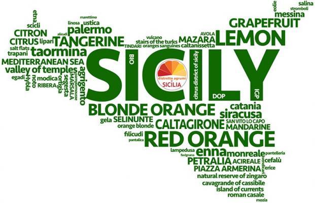 Che fine hanno fatto i ventitrè Distretti produttivi istituiti dalla Regione siciliana nel 2005?