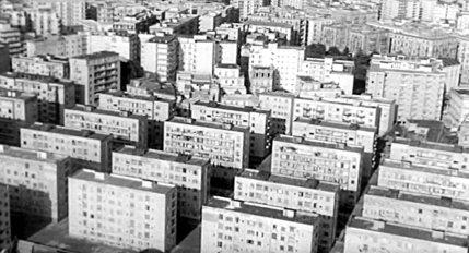 A Catania gli alberi sono sacri, a Palermo si eliminano. Il cemento di Mondello paradigma dell'eterno 'Sacco edilizio'