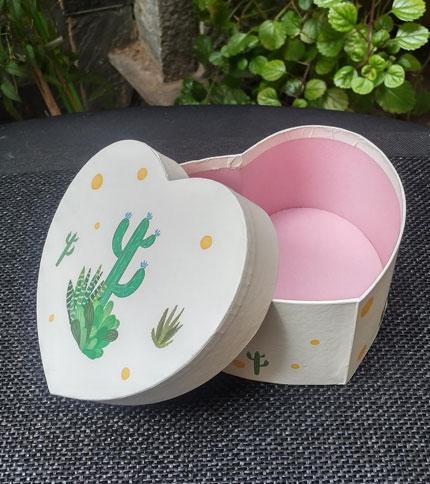 Foto 3 - Caja con diseño cactus, abierta, vista lateral